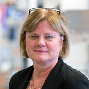 CDB Faculty Talk: Nancy A. Speck, Ph.D. @ 1101 BRB