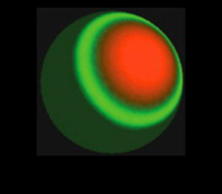 yeast-cartoon-pattern_400x300