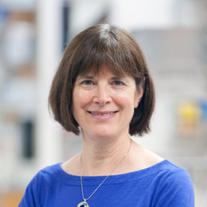 CDB Faculty Talk: Mary Mullins, Ph.D. @ 9-146 Smilow