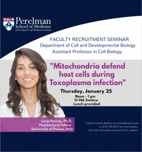 CDB Seminar (Recruitment) - Lena Pernas, Ph.D. @ 11-146 Smilow | Philadelphia | Pennsylvania | United States