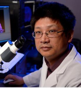 CDB Faculty Talk: Hongjun Song @ 9-100 Smilow   Philadelphia   Pennsylvania   United States