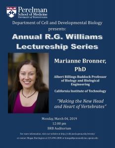 Marianne Bronner @ BRB Main Auditorium
