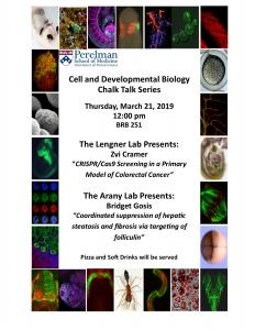 CDB Chalk Talks: Arany/Lengner Labs @ 251 Biomedical Research Building