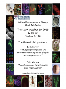 CDB Chalk Talk: Granato Lab @ 9-146 Smilow