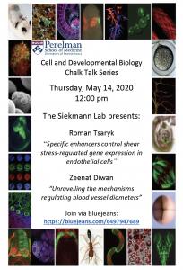 CDB Chalk Talk: Siekmann Lab @ via Bluejeans