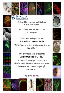 CDB Chalk Talk: Zaret/Bonasio Labs @ Zoom