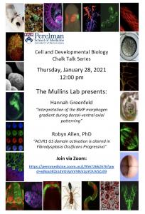 CDB Chalk Talk: Mullins Lab @ Zoom
